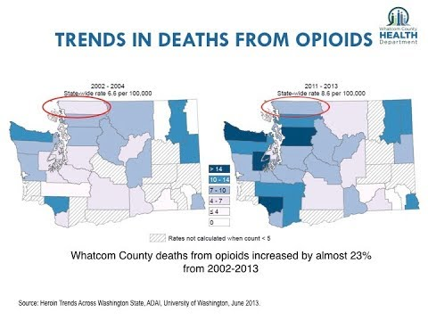 Trends in deaths from Opiods, Washington 2002-2013.